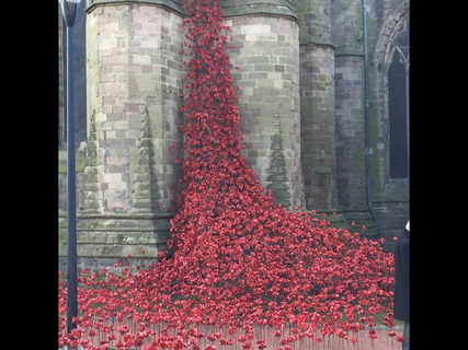 Poppies: Weeping Window
